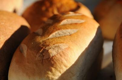 Great-Harvest_PG4