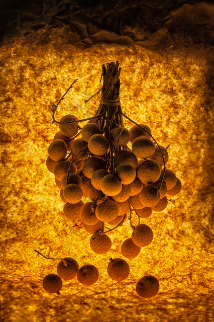 grapes_artwalk_image_1