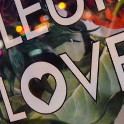 Fluert Love-1
