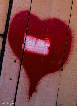Fragile Heart-1