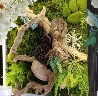 Alonzo Fernandez at Our Secret Garden Florist